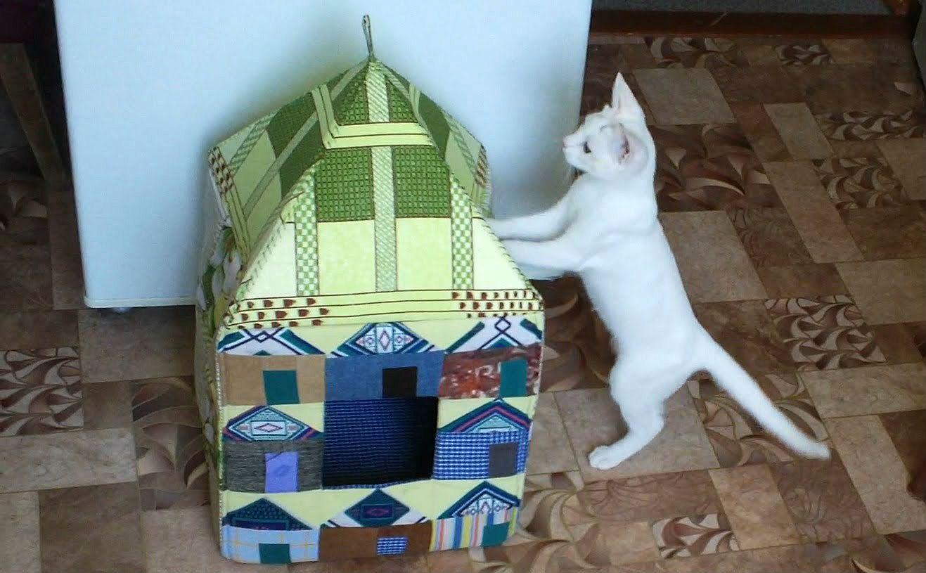 Как зделать домик для кошки своими руками