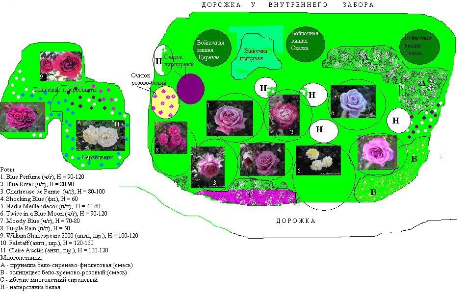 почву для розария