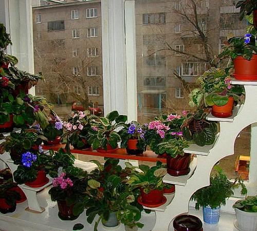 Настенные полки для цветков своими руками 304